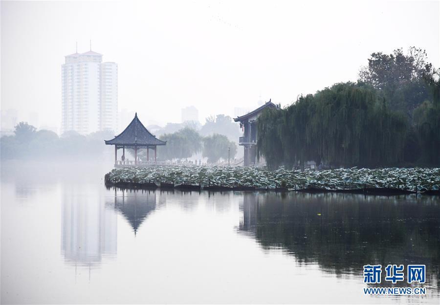 """(环境)(1)""""水墨""""大明湖"""